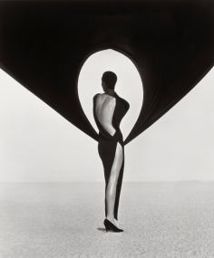 herb-ritts-versace-dress-back-view-el-mirage-1990